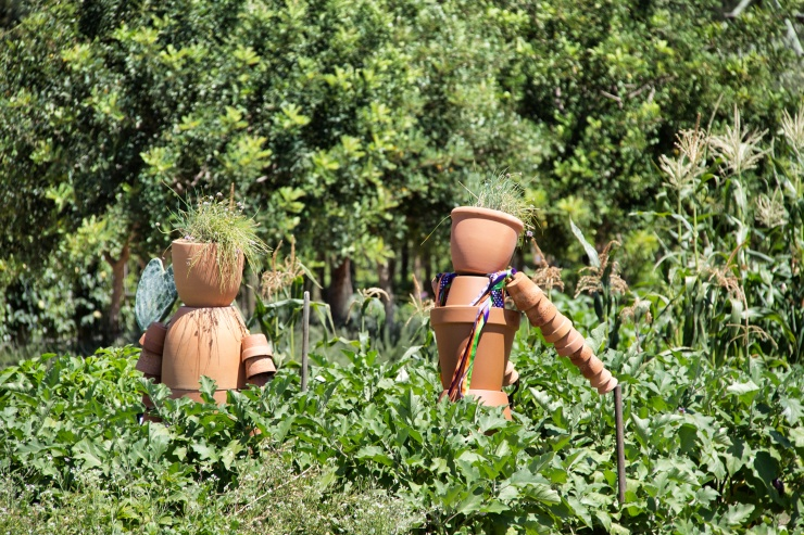 The scarecrows at Babylonstoren
