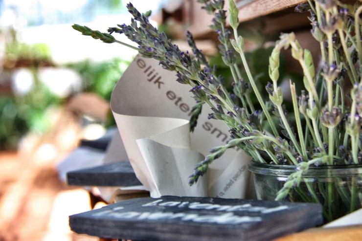 Lavender, Babylonstoren