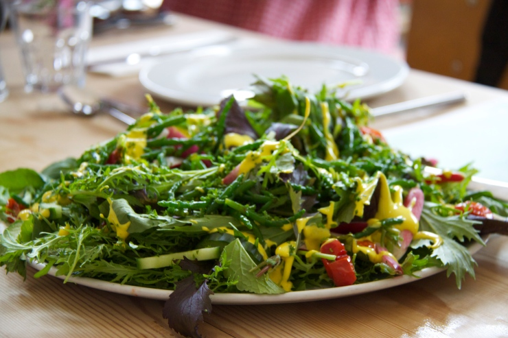 Riverford Mixed Leaf Salad