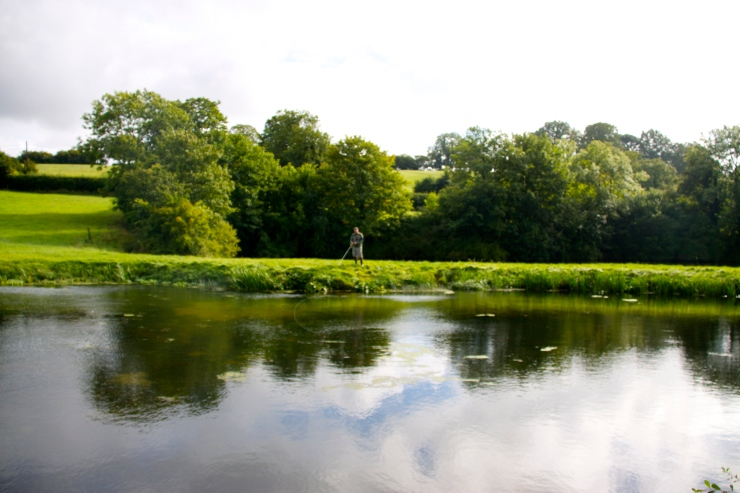 Cameley Lakes