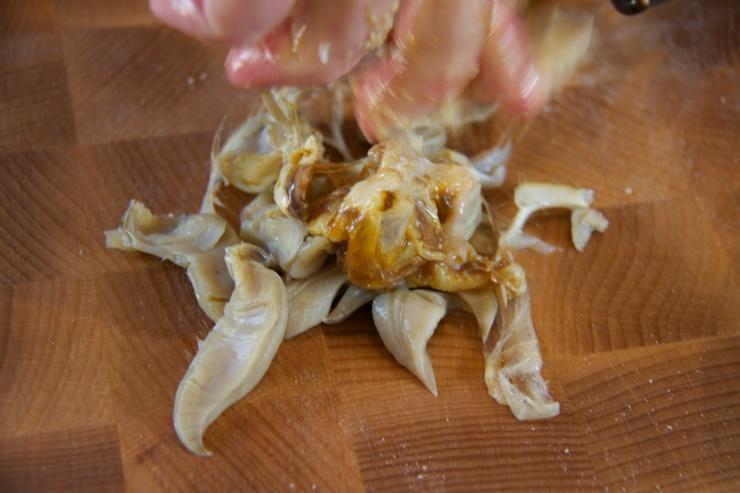 Crab gills