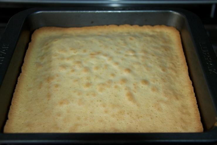 Just-baked sponge