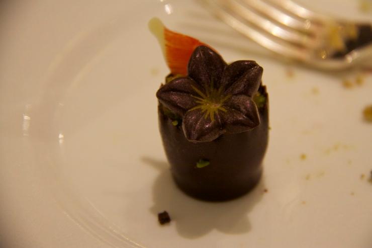 Chocolate Flowerpot