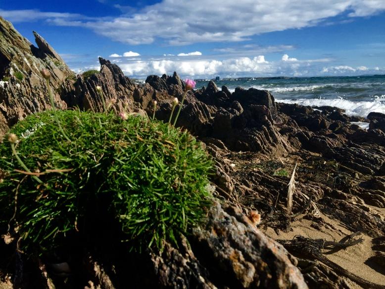 Beach, Islay